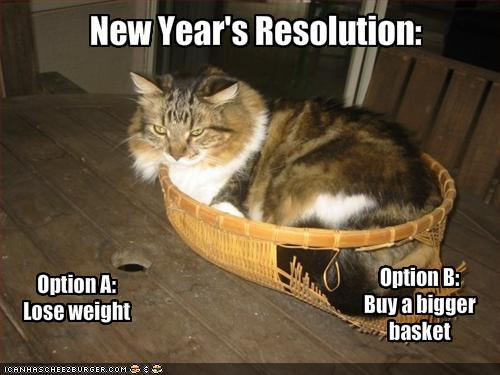 a cat's new year resolution